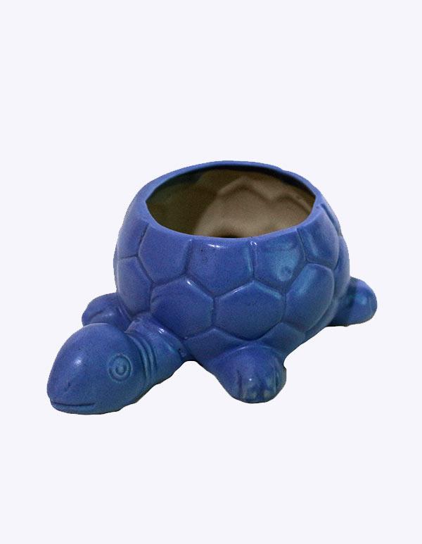 Turtle (TCC-222)