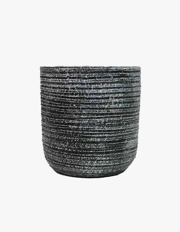 Line Texture (TCP-154)